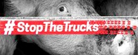 stop the trucks [ 2.30 Kb ]
