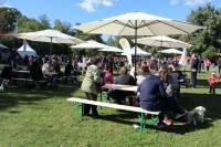 Vege piknik Bundek 2017.