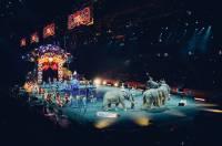Cirkus sa životinjama