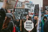 March for Animals 2019, photo: Jelena Rasic [ 88.03 Kb ]