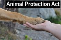 animal protection act
