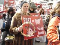Carnival anti-fur demo in Ljubljana 6 [ 56.78 Kb ]
