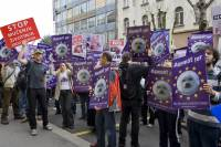Zagreb demo against the seal slaughter 12 [ 323.99 Kb ]
