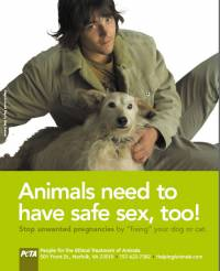 Animals need to have safe sex, too! [ 48.17 Kb ]