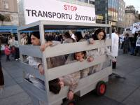 Demo against animal transport 2009. [ 478.87 Kb ]