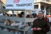 Demo against animal transport 2009. [ 440.52 Kb ]