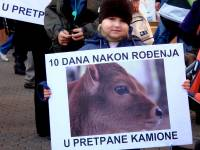 Demo against animal transport 2010 25 [ 120.62 Kb ]