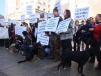 Protest for the implementation of the Animal Protection Act 13 [ 133.49 Kb ]