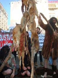 Demo against fur 2011 [ 162.95 Kb ]