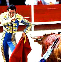 Bull-fighting and Fiesta -01 [ 34.40 Kb ]