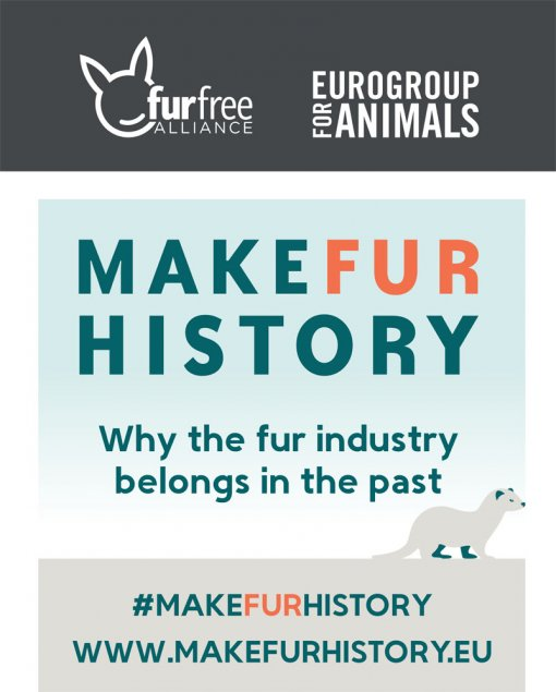 Make Fur History [ 112.59 Kb ]