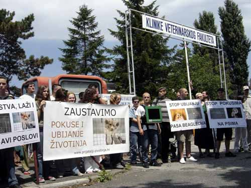 Protest in front of the Faculty of Veterinary Medicine 1