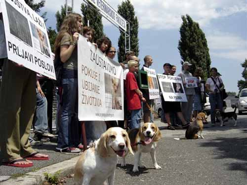Protest in front of the Faculty of Veterinary Medicine 2