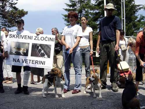 Protest in front of the Faculty of Veterinary Medicine 8