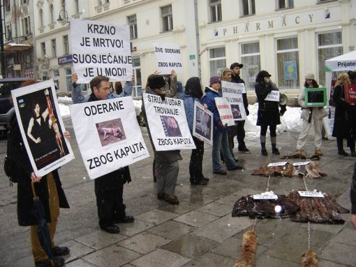 Anti-fur demo in Sarajevo 5 [ 133.08 Kb ]