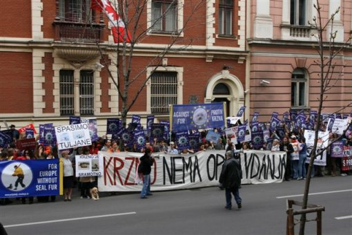 Zagreb demo against the seal slaughter 3 [ 72.36 Kb ]