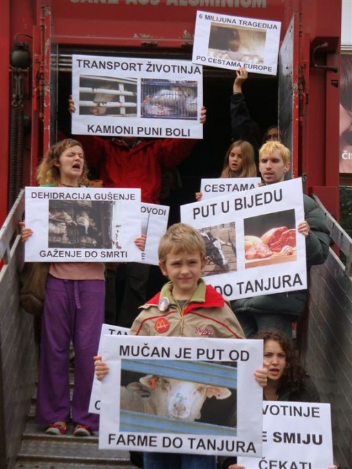 Protest against live animal transport 5 [ 98.82 Kb ]