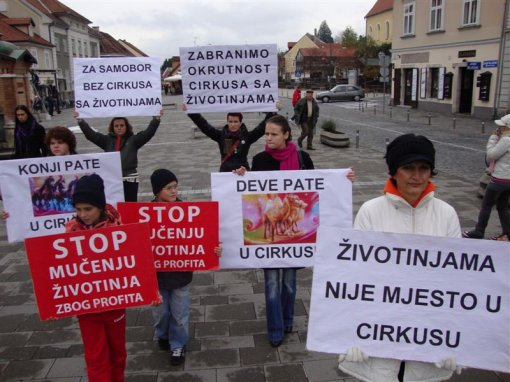 Protest against circuses in Samobor 2 [ 114.06 Kb ]