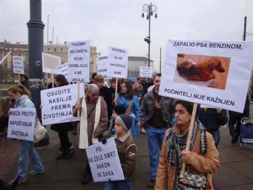 Protest for the implementation of the Animal Protection Act 6 [ 96.62 Kb ]