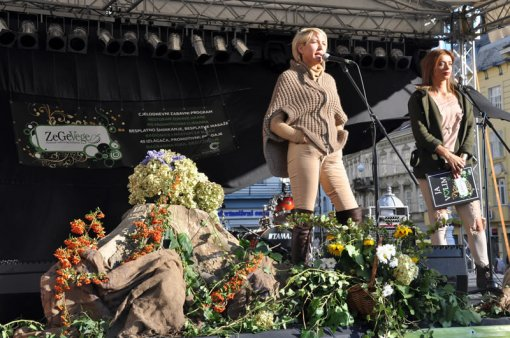 ZeGeVege Festival 2011 - Heather Mills [ 136.98 Kb ]