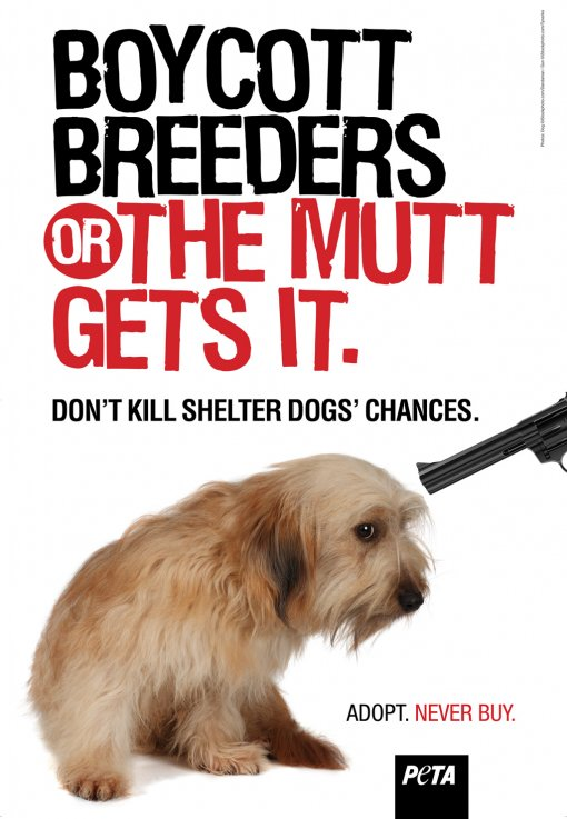 Boycott Breaders of the Mutt Gets It [ 280.51 Kb ]