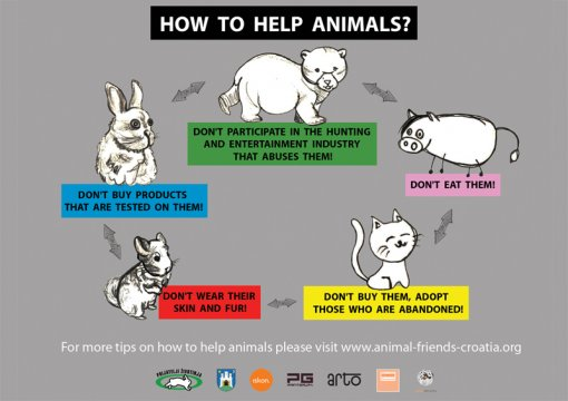 Billboard How to Help Animals eng [ 253.86 Kb ]