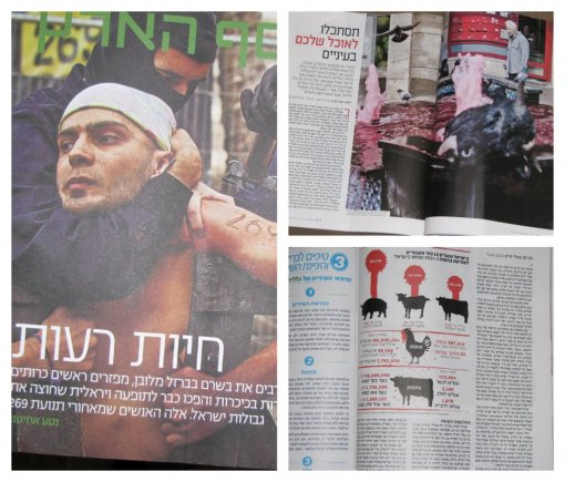 The Haaretz Newspaper - 269 story [ 157.93 Kb ]