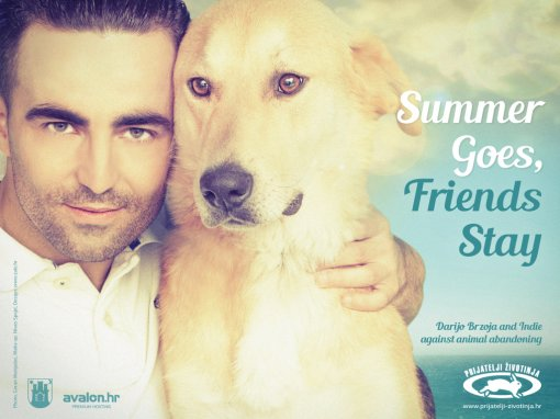 Darijo Brzoja - Summer Goes, Friends Stay  billboard [ 673.20 Kb ]