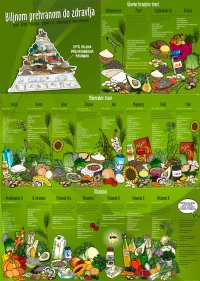 Pyramid - With plant-based diet to health